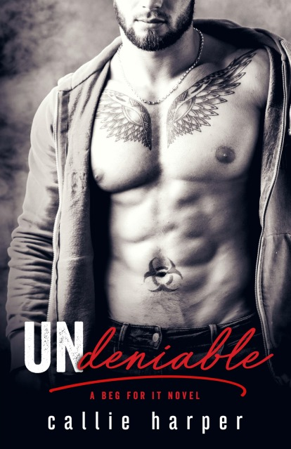 undeniable-ebook-cover