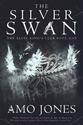 4f605-the2bsilver2bswan2bebook2bcover