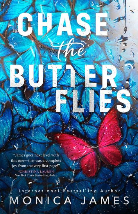 Chase the Butterflies Ebook