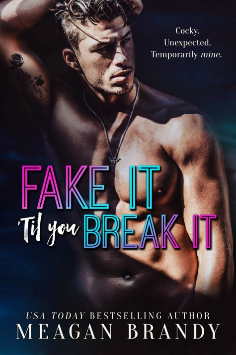 fake it til you break it -small